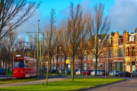 Den Haag-3679
