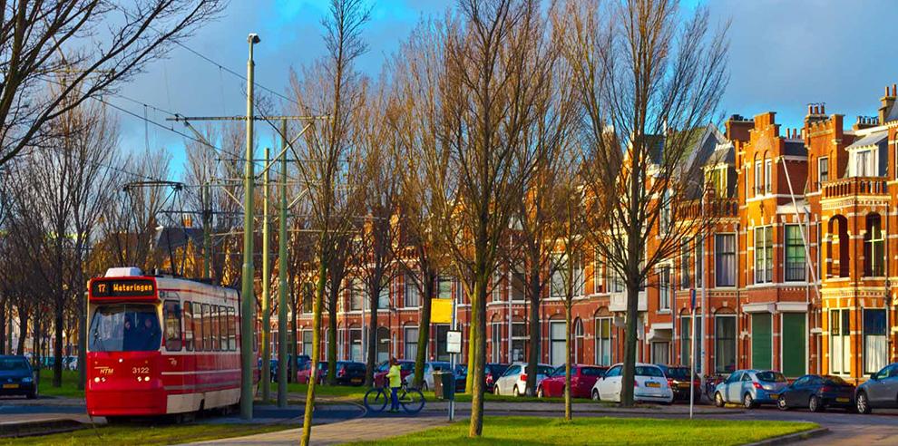 ss-Den-Haag-3679