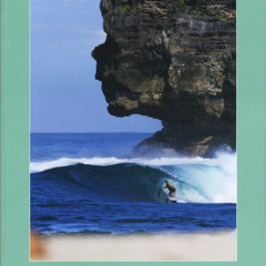 Surf Culture Collection Vol. 003 – Cover – Italy – 2014